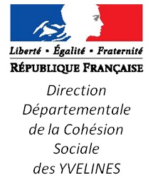 logo_DDCS_long_blanc